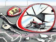 बालोद जिले में 31 दिनों में 40 सड़क हादसों में 20 मौतें, 41 लोग हुए घायल
