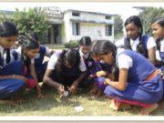 8 मार्च विश्व महिला दिवस विशेष : सरकारी स्कूलों में पढ़ने वाली बेटियों को सर्वाधिक प्रोत्साहन की दरकार