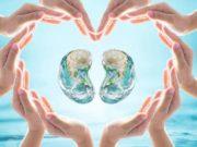 विश्व किडनी दिवस